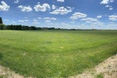 back-field