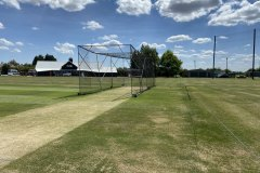 cricket-nets